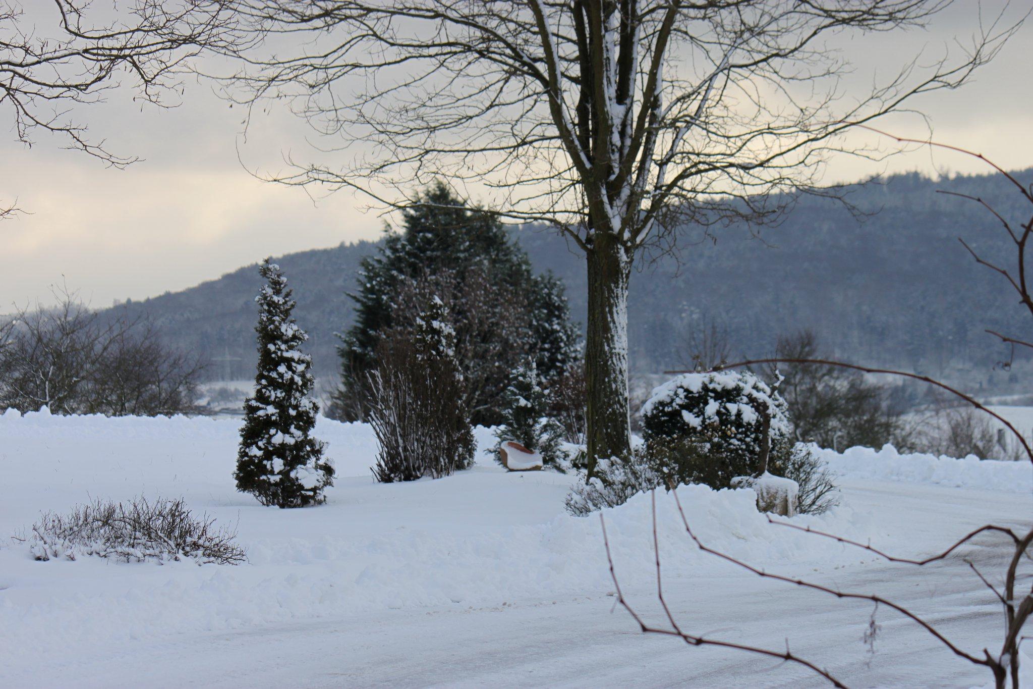 Winterbesen